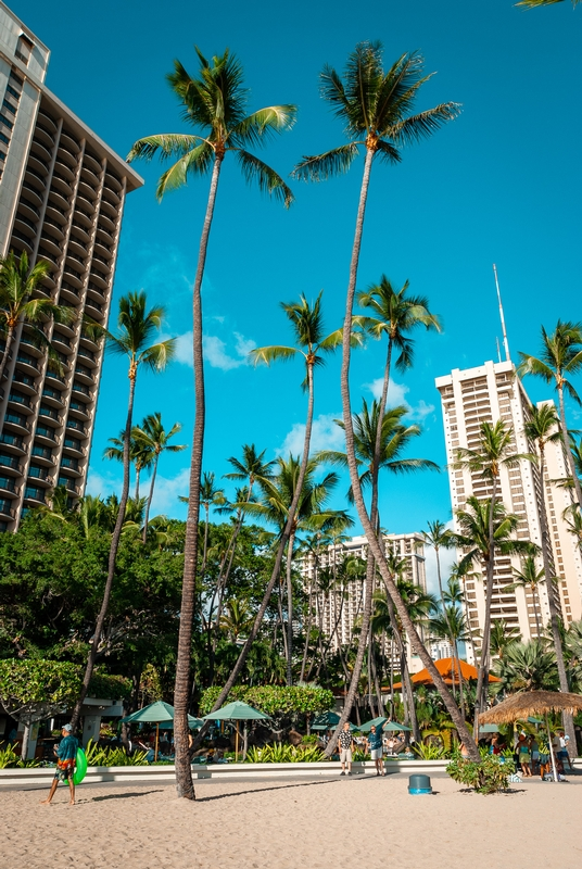 The Hilton Hawaiian Village in Waikiki 2