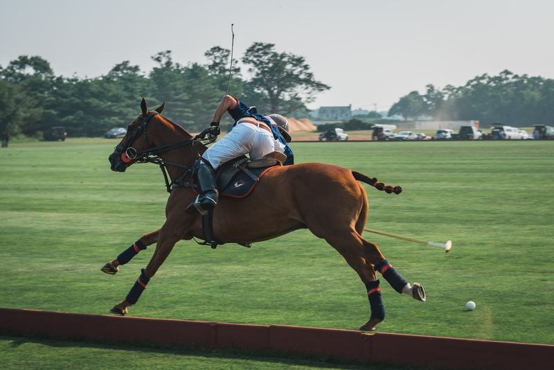 Polo at Full Speed - Part II