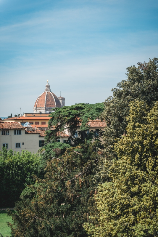 The View from the. Four Seasons Firenze