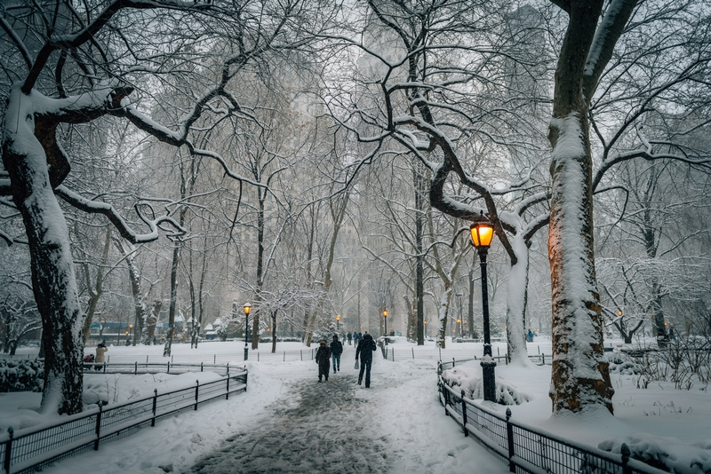 A Snowy Madison Square Park