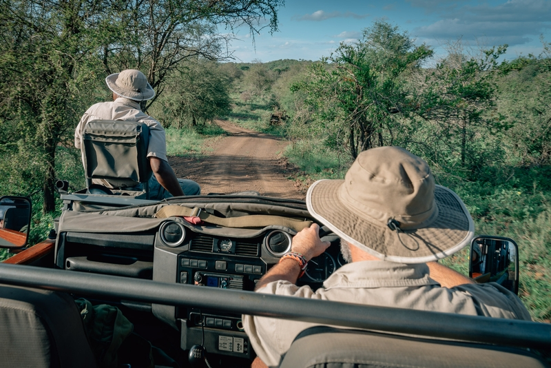 A Typical Game Drive