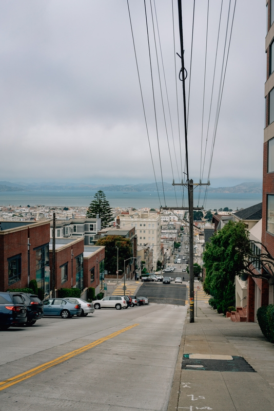 Overlooking the San Francisco Bay