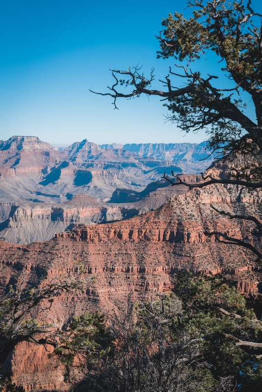 Grand Canyon National Park - 2018-1208-DSC01775