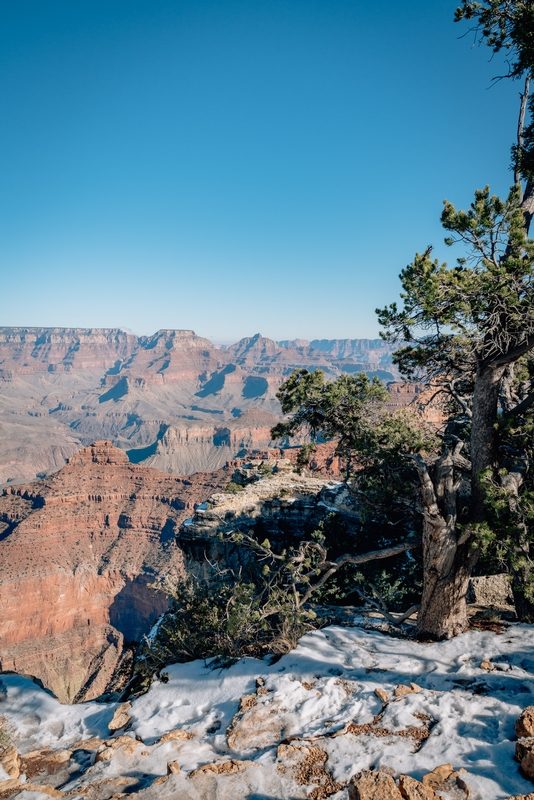 Grand Canyon National Park - 2018-1208-DSC01780
