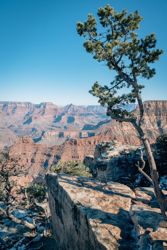 Grand Canyon National Park - 2018-1208-DSC01786