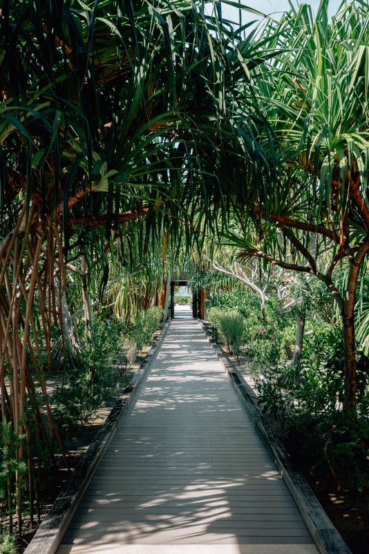 The Garden Path to the Concierge